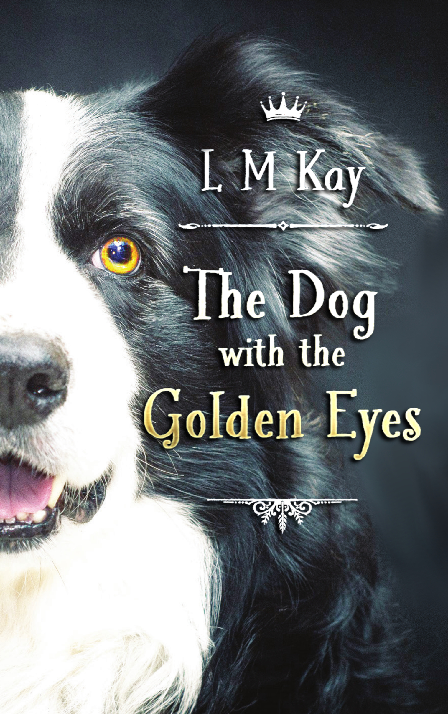Children's Fiction - The Dog with the Golden Eyes